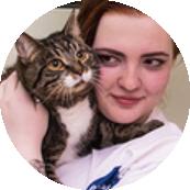 Сотрудник гостиницы для кошек