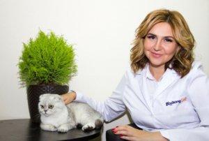 Основатель гостиницы для кошек
