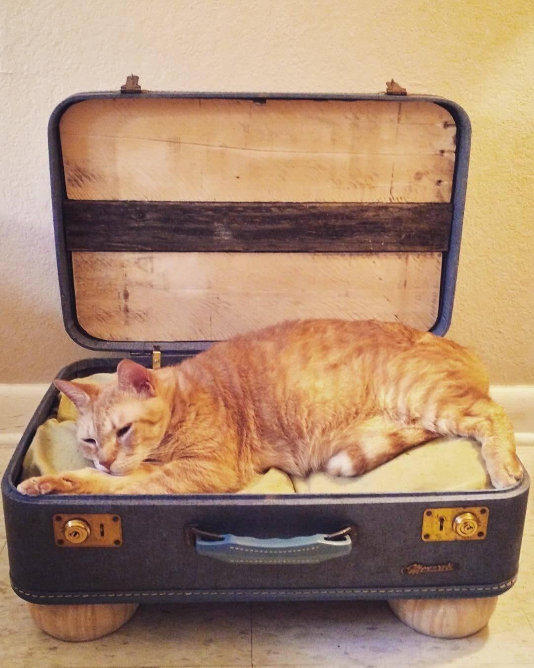 Отправляетесь в отпуск
