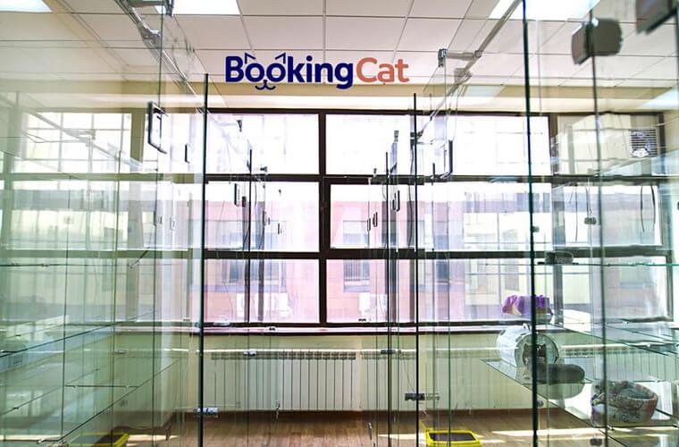bookingcat отель