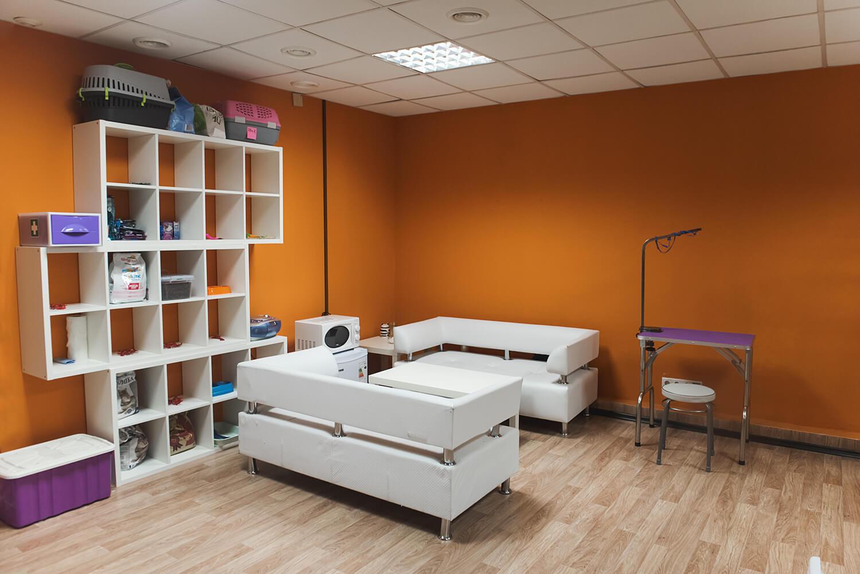 Декор BookingCat