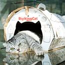 Гостиница для кошек цены